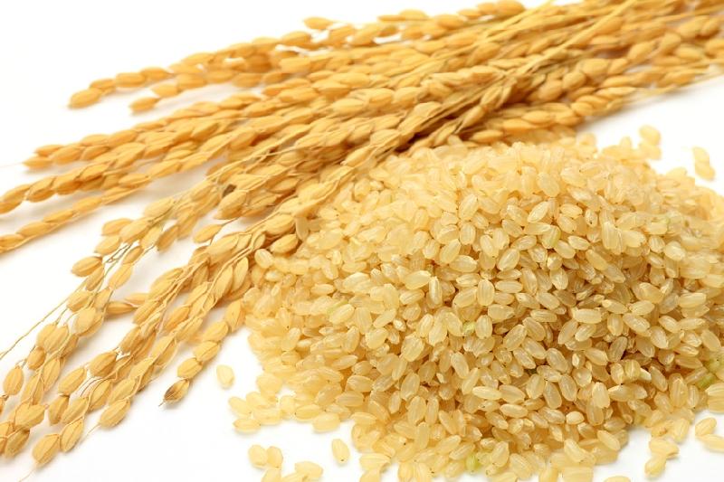 【美味しさにはコツがあるんです】炊飯器で♪玄米の美味しい ...